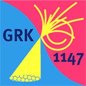Logo_graduate_school_GRK1147